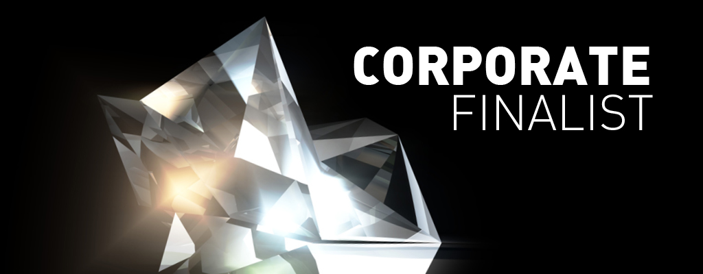 v_finalist_corp